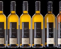 Cenu za nejlepší vína XVIII. ročníku TOP 77 si odneslo Vinařství Volařík